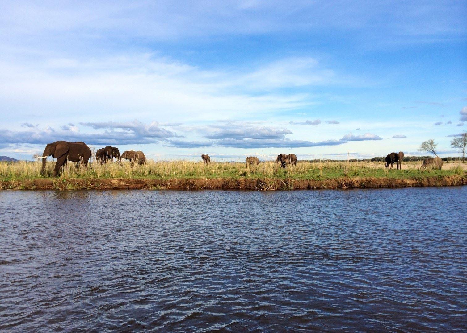 Lower Zambezi National Park   Zambia   The Africa Specialists™