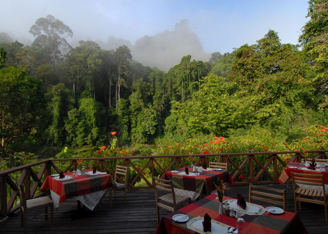 Borneo Rainforest Lodge Hotels In Danum Valley Audley